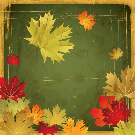 Autumn leaves grunge background  Vector