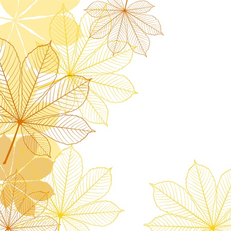 foliages: Background with falling autumn leaves