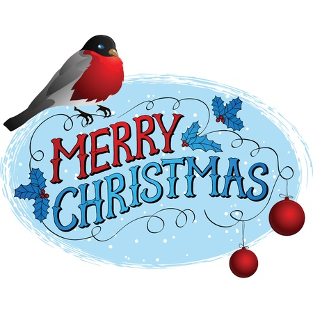 Bird on a tree in winter  Christmas greeting card  Vector
