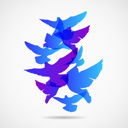 Vector pigeons background design  Collorful