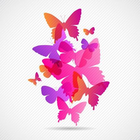 Vector butterflies background design  Collorful