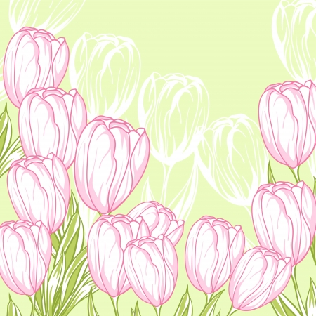 Spring floral background with pink tulips  card  Vector
