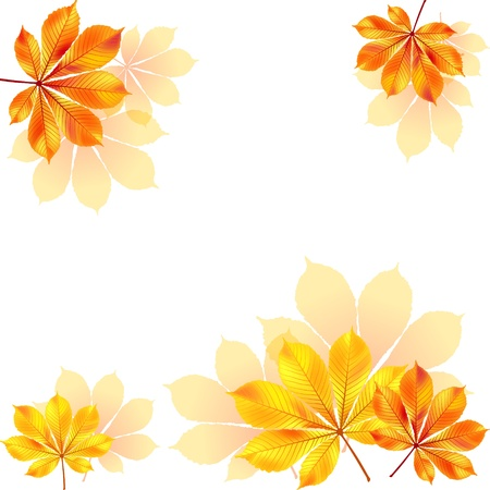 Autumn background with yellow leaves  illustration  Vector