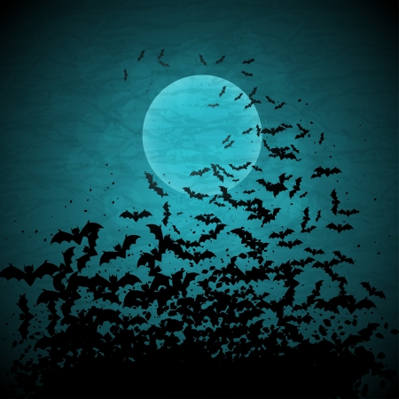 horrors: Halloween background with moon and bats