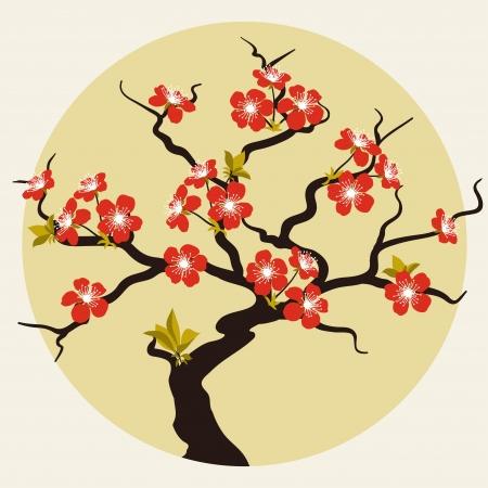 sakuras: Tarjeta con flores estilizadas flor de cerezo Vectores