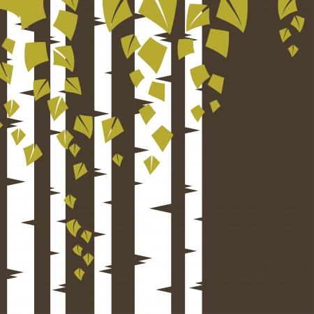 foret de bouleaux: Arri�re-plan avec des branches de bouleau Illustration