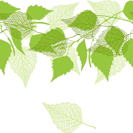 birch tree: Seamless pattern with green birch leaves