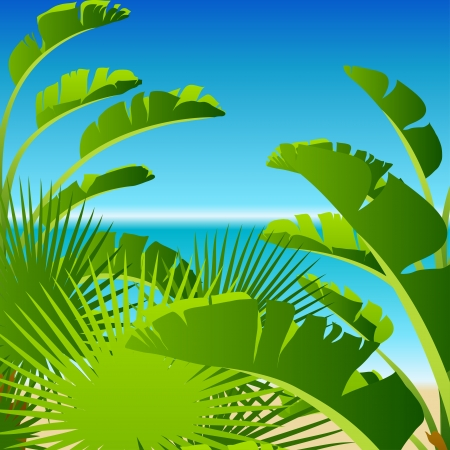 Tropical palm on sea background