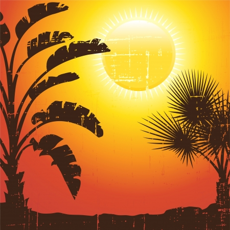 Background with palm trees silhouette at sunset  Vector