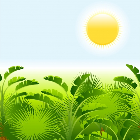 Tropical palm with sea on sunny background  Illustration