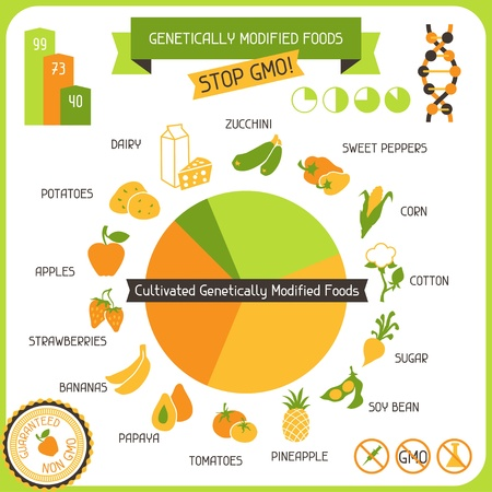 food safety: Information Poster Genetically Modified Foods Illustration