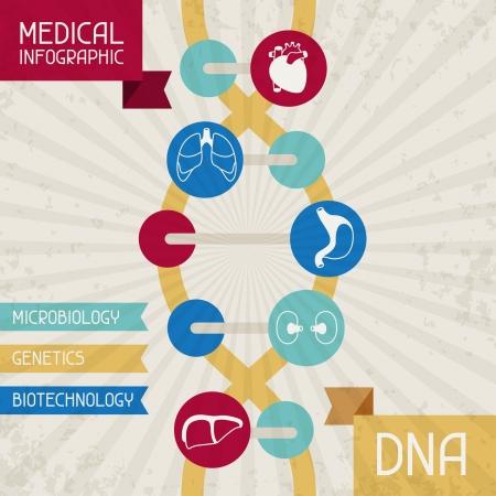Medische infographic DNA. Stock Illustratie