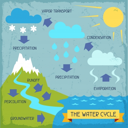business cycle: The water cycle. Poster with nature infographics in flat style. Illustration