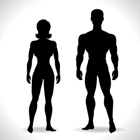 anatomy muscles: Silhouettes of man and woman in black color. Illustration
