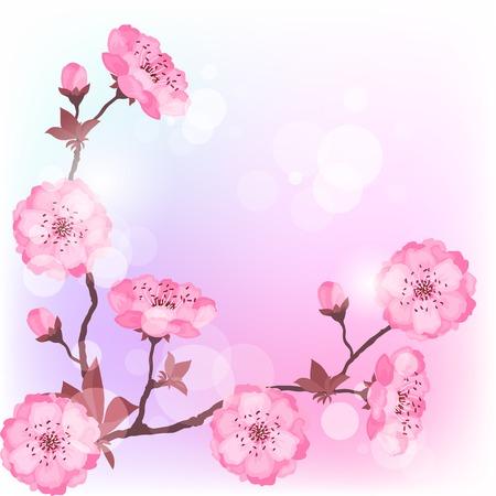 Primavera fiori di ciliegio sfondo naturale.