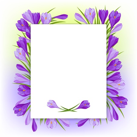 Spring flowers crocus natural background. Vector