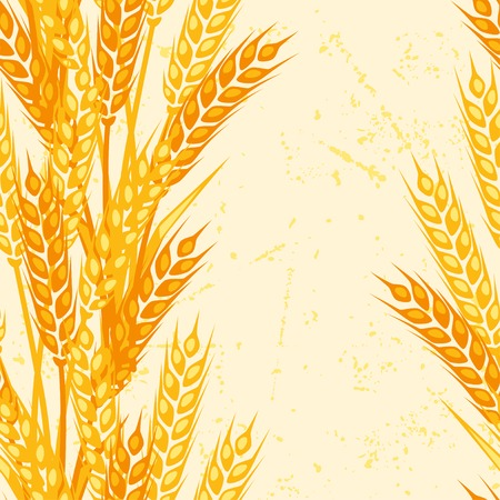 reap: Seamless pattern with ears of wheat.