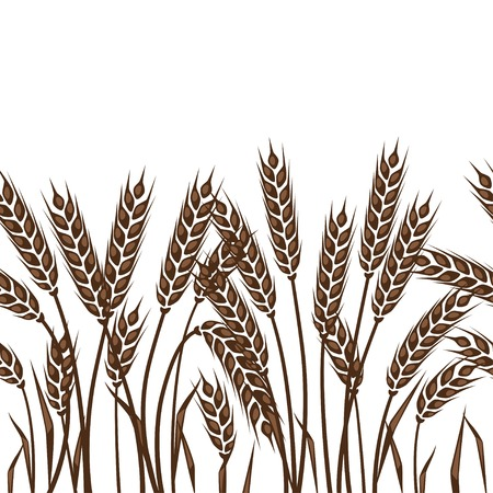 grain fields: Seamless pattern with ears of wheat.