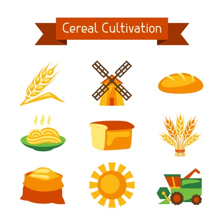 Cereal cultivation and farming icon set. Vector