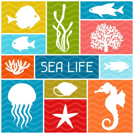 sea animals: Marine life background design with sea animals.