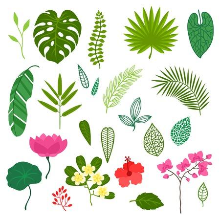 Set van gestileerde tropische planten, bladeren en bloemen. Stock Illustratie