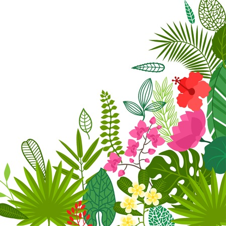 bamboo border: Background of stylized tropical plants, leaves and flowers. Illustration