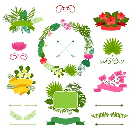 palm wreath: Set of tropical plants wreath, ribbons and labels. Illustration
