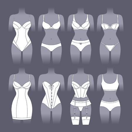cuerpo femenino: Ropa interior de moda conjunto de varios ropa interior femenina.