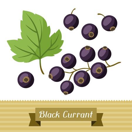 currants: Set of various stylized black currants. Illustration