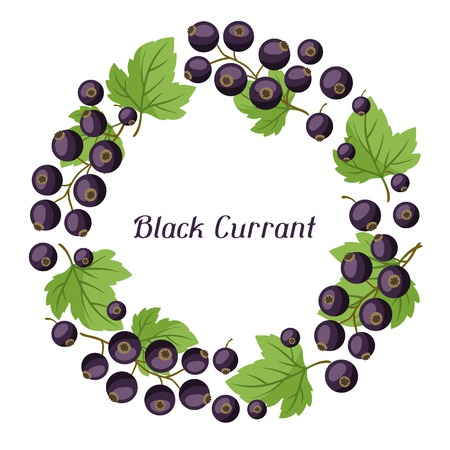 Nature background design with black currants.