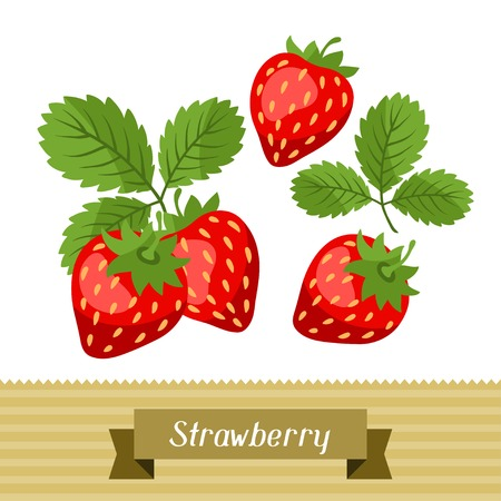 strawberry plant: Set of various stylized strawberries.