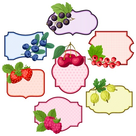 Set of various badges, labels with berries. Vector