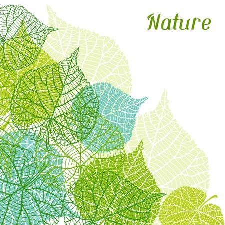 背景程式化的綠葉。