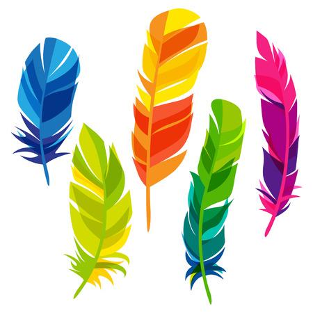 pluma: Conjunto de plumas abstractas transparentes brillantes sobre fondo blanco Vectores