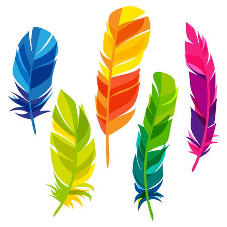 Set of abstract bright transparent feathers on white background Vettoriali