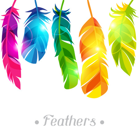 Colorful background with bright abstract transparent feathers Reklamní fotografie - 40101119