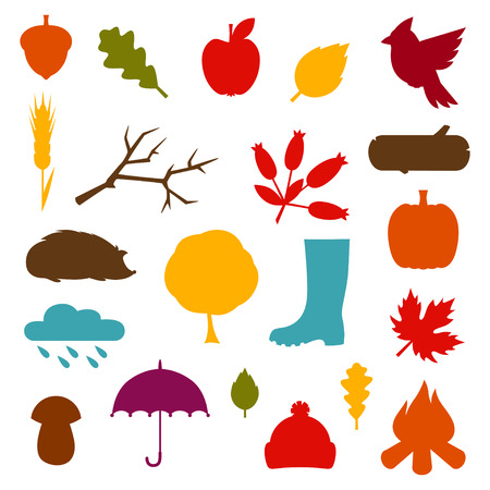 mushroom illustration: Autumn icon and objects set for design.