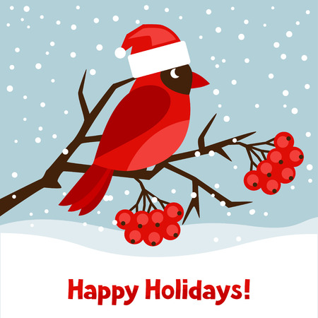 Happy holidays greeting card with bird red cardinal.