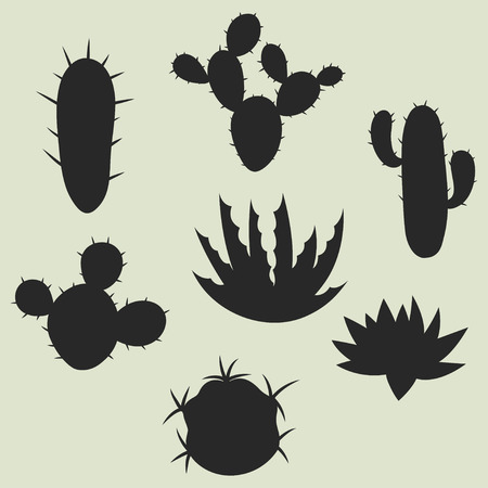 Collection of stylized cactuses and plants. Natural illustration.