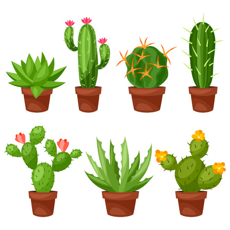 cacti: Collection of abstract cactuses in flower pot. Illustration