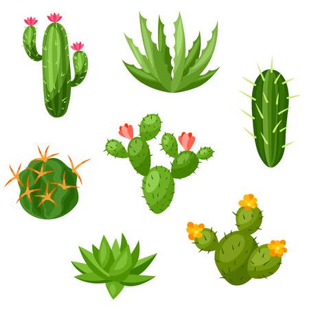 抽象的仙人掌和植物的收集。自然例證。