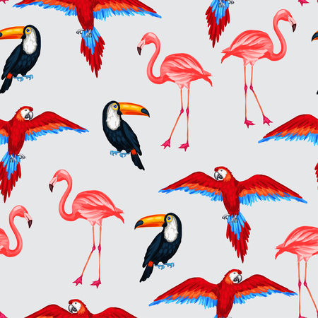 flamenco ave: Pájaros tropicales sin patrón con loros tucanes y flamencos. Vectores