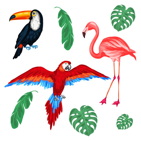 Set of tropical birds and palm leaves. Stock Illustratie