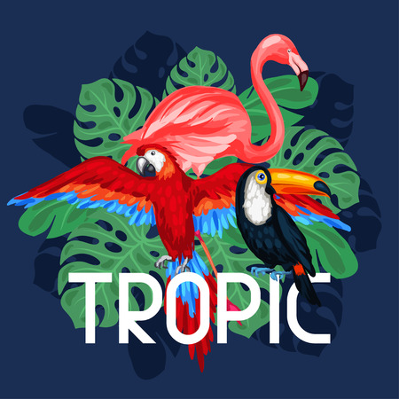 tropical birds: Tropical birds print design with palm leaves.