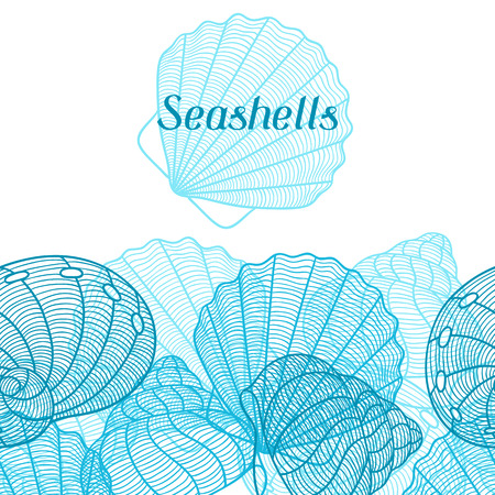 shell: Marine background with stylized seashells. Design for cards, covers, brochures and advertising booklets.