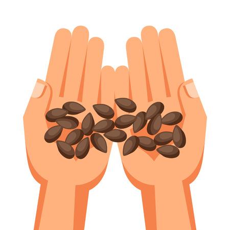 handful: Illustration of human hands holding handful seeds.