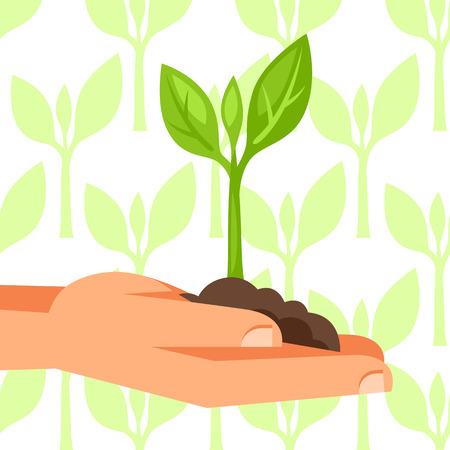 small plant: Illustration of human hand holding green small plant.