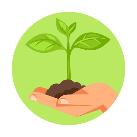 緑の小さな植物を持っている人間の手のイラストです。