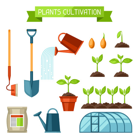 Set of agriculture objects. Instruments for cultivation, plants seedling process, stage plant growth, fertilizers and greenhouse. Stock Illustratie