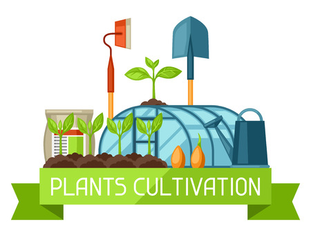 cultivation: Concept with agriculture objects. Instruments for cultivation, plants seedling process, stage plant growth, fertilizers and greenhouse. Illustration